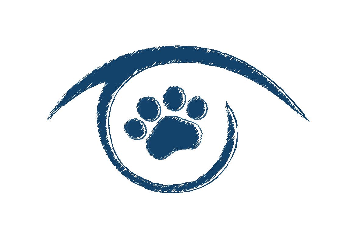 Animal Eye Clinic