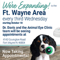 Animal Eye Clinic Serving Fort Wayne Area